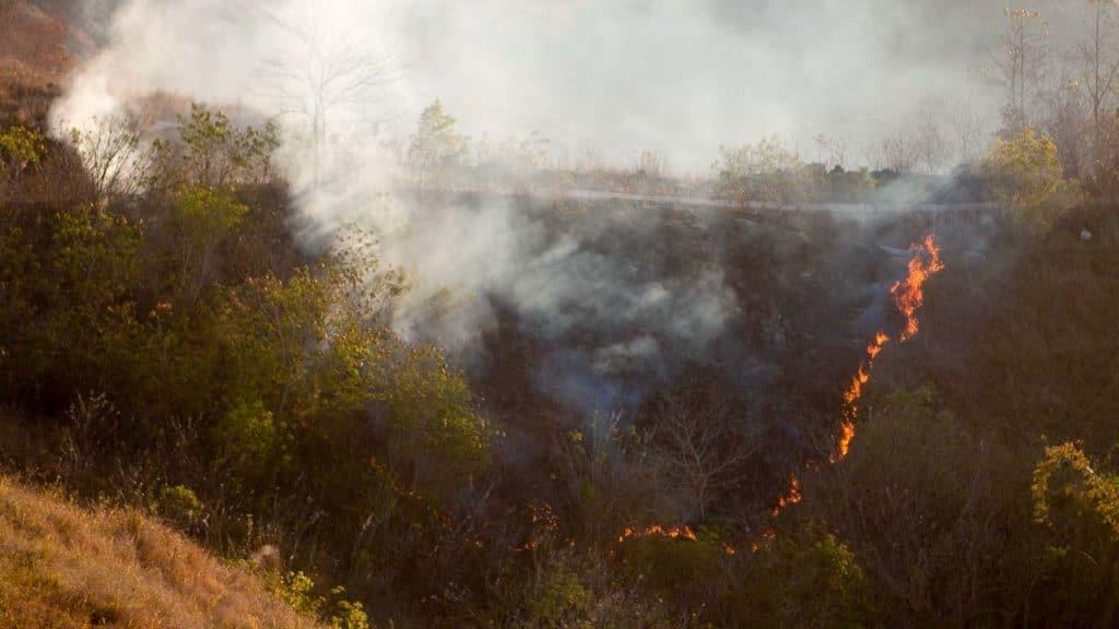 Effet des incendies et feux rampants dans les terres de Sumba